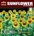1/35 Sunflower