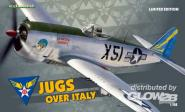 P-47D Jugs over Italy
