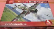 """1/48 HAWK 75 """"BLITZ HAWK"""""""