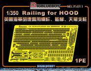 Railing for HOOD