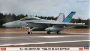 Boeing EA-18G Growler 'VAQ-135 Black Ravens'